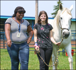 Students participating in Garfield Park Academy's Equine Therapy Program