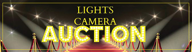 2017 Eugene Morse Memorial Gala Dinner and Golf Outing - Lights Camrea Auction